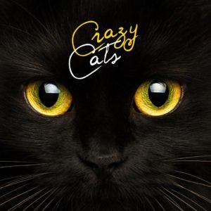 *APÉRO CONCERT: LES CRAZY CATS!
